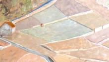 peinture des vignes sur Epesses, vers la Croix